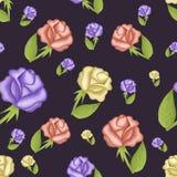Carta da parati colorata delle rose Fotografia Stock Libera da Diritti