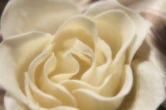 Carta da parati con il fiore Fotografie Stock