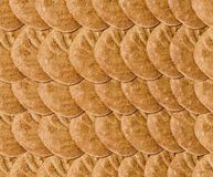 Carta da parati del biscotto Fotografie Stock Libere da Diritti