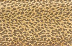 Carta da parati della pelliccia della tigre Fotografie Stock Libere da Diritti