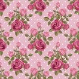 Carta da parati della rosa di rosa Immagini Stock Libere da Diritti