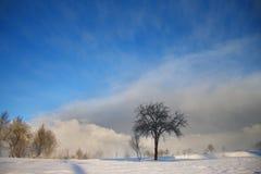 Carta da parati di paesaggio di inverno con le nubi scure Fotografia Stock
