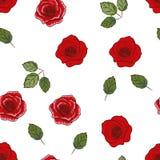 Carta da parati floreale senza cuciture Fotografia Stock