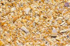 Carta da parati naturale del fondo delle coperture e della sabbia Fotografia Stock