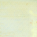 Carta da parati senza cuciture del fiore immagine stock