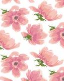 Carta da parati senza cuciture dell'acquerello della pittura a olio dell'anemone del fiore del fiore Fotografia Stock