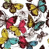 Carta da parati senza cuciture di vettore con le farfalle variopinte Immagini Stock