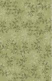 Carta da parati senza cuciture floreale decorativa variopinta del fondo delle viti inglesi verdi del giardino Fotografia Stock