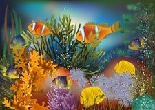 Carta da parati subacquea con il pesce tropicale Fotografia Stock Libera da Diritti