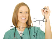 Carta da rede do desenho da enfermeira Imagens de Stock