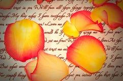 Carta de amor con los pétalos de Rose con la ilustración Fotos de archivo libres de regalías