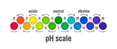 Carta de la escala del valor de pH ilustración del vector