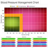 Carta de la gestión de la presión arterial Imagen de archivo libre de regalías