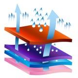 Carta de processo de Wicking da umidade ilustração royalty free