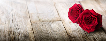 Carta dei biglietti di S. Valentino - luce solare su due rose fotografia stock libera da diritti