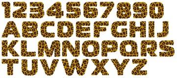 Carta del alfabeto de la piel del estilo del tigre. Imagenes de archivo