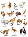 carta del animal salvaje libre illustration