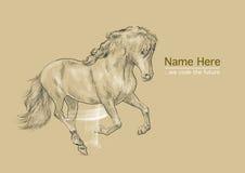 Carta del cavallo Immagini Stock