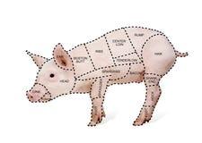 Carta del cerdo del carnicero foto de archivo
