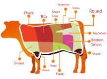 Carta del corte de la carne de vaca Foto de archivo