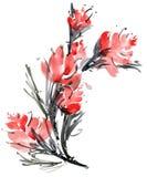 Carta del fiore dell'acquerello Fotografia Stock Libera da Diritti