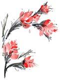 Carta del fiore dell'acquerello Fotografia Stock