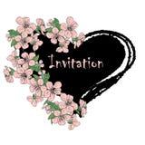 Carta del fiore della ciliegia Immagine Stock Libera da Diritti