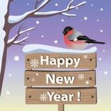Carta del nuovo anno con il ciuffolotto Immagine Stock