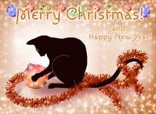 Carta del nuovo anno e di Natale con un gatto nero Fotografia Stock