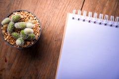 Carta del taccuino e del succulente in vaso sullo sfondo naturale di natura morta di legno della tavola, piante del cactus su fon Immagine Stock Libera da Diritti