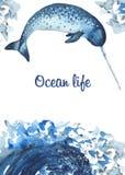 Carta dell'acquerello con i mammiferi oceanici royalty illustrazione gratis