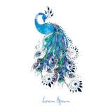 Carta dell'acquerello di saluto con il pavone Fotografia Stock Libera da Diritti