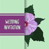 Carta dell'invito di nozze di Refind e del classico con il fondo della struttura del fiore dell'ibisco, etichetta floreale disegn fotografie stock