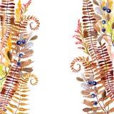 Carta delle erbe del prato di autunno dell'acquerello Immagini Stock Libere da Diritti