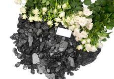 Carta delle rose bianche del carbone tagliata Immagini Stock Libere da Diritti