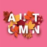 Carta di autunno con differenti elementi della pianta Fotografia Stock
