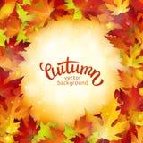 Carta di autunno, foglie variopinte ed iscrizione scritta a mano, fondo, modello, illustrazione illustrazione di stock