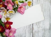 Carta di carta con i fiori di alstroemeria Fotografie Stock