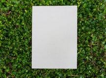 Carta di carta disposta sul modello verde della foglia Fotografia Stock Libera da Diritti
