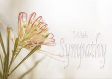 Carta di compassione australiana di grevillea immagine stock
