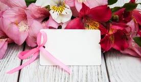 Carta di carta con i fiori di alstroemeria Immagini Stock