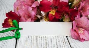 Carta di carta con i fiori di alstroemeria Immagine Stock