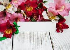 Carta di carta con i fiori di alstroemeria Fotografie Stock Libere da Diritti