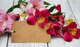Carta di carta con i fiori di alstroemeria Fotografia Stock Libera da Diritti