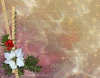 Carta di congratulazione Fotografia Stock