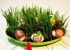 Carta di congratulazione di Pasqua fotografie stock