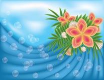 Carta di estate con i fiori Fotografie Stock