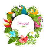 Carta di estate con le piante tropicali, ibisco, plumeria, fenicottero, pappagallo, tucano illustrazione di stock