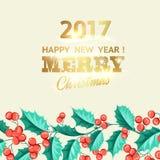 Carta di festa del vischio di Natale Immagine Stock