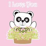 Carta di giorno del ` s del biglietto di S. Valentino con il panda sveglio e un vaso del fiore Immagini Stock